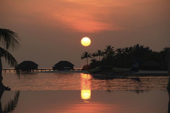 Conrad Maldives Rangali Island: Infinity Pool