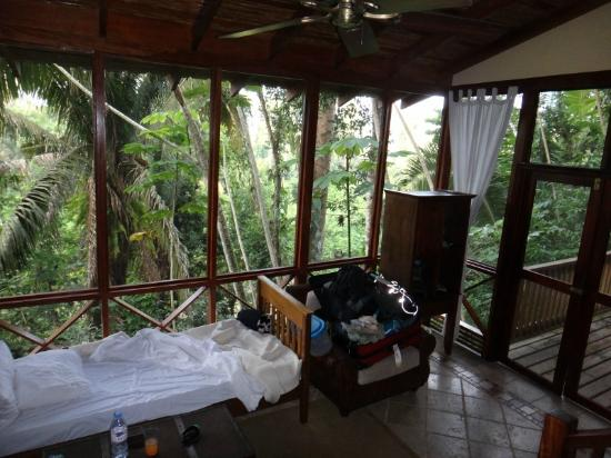 Ian Anderson's Caves Branch Jungle Lodge: Riverview Tree House