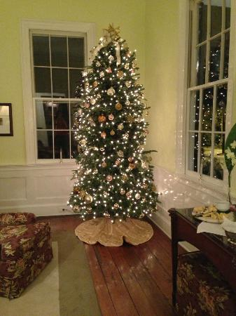 The Rhett House Inn: Beautiful Christmas Tree
