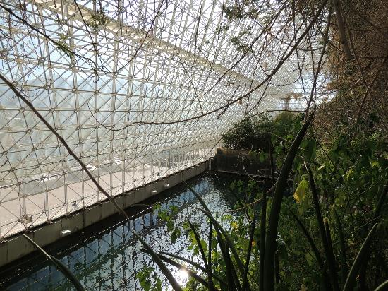 "Biosphere 2: Inside the ""ocean"""