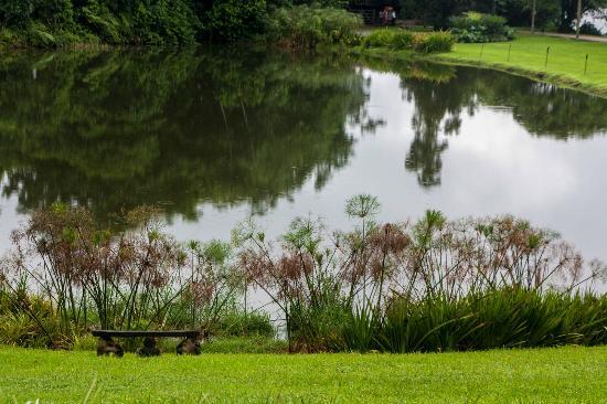 Hotel Hacienda Sueno Azul: Vista al lago desde el comedor