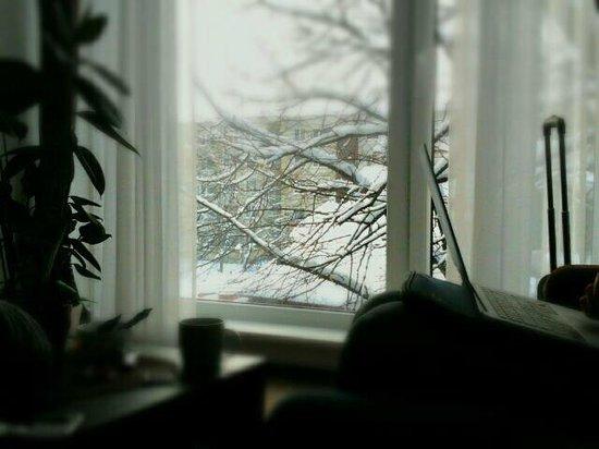 Hotel Vivulskio Apartments : Stanza 15 la fortuna di arrivare con la neve
