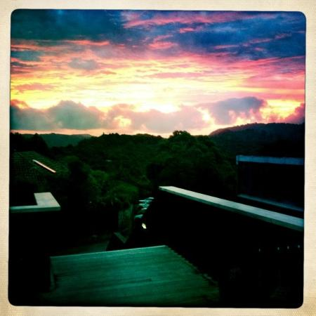 The Refreshment Room: Sunset off the deck