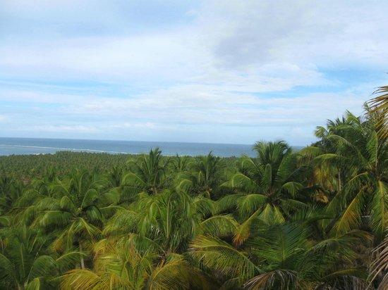 Gunga Beach: Vista Gunga