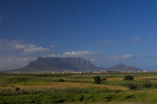 Bloubergstrand, South Africa: View of Cape Town from the Hotel (wildlife reserve in the foreground)