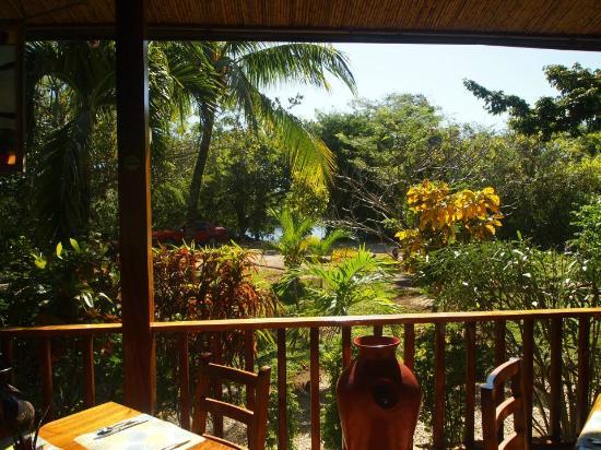 Hotel Bula Bula: Entorno natural del complejo