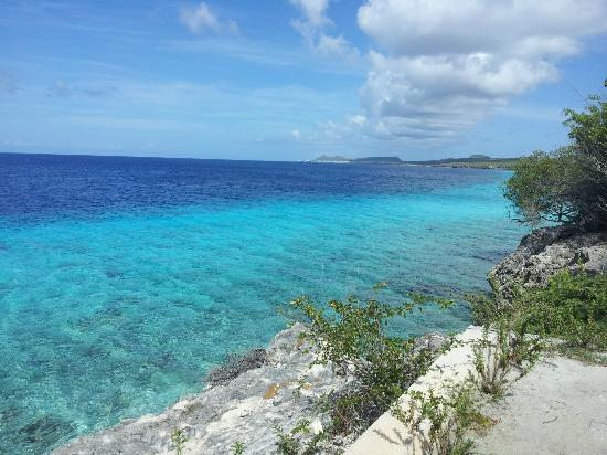Bruce Bowker's Carib Inn: How can you not love Bonaire?