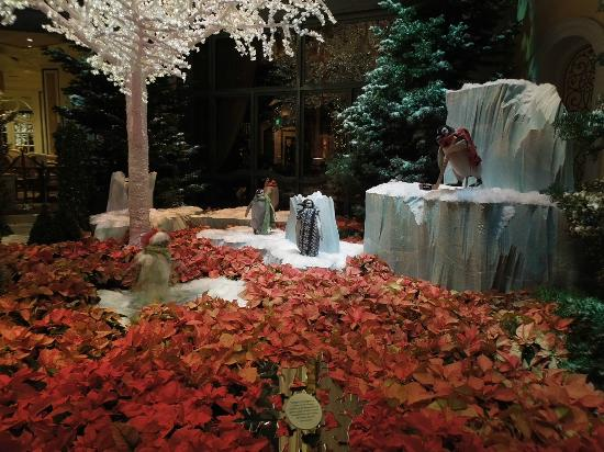 Huge Christmas Tree Picture Of Conservatory Botanical Gardens At Bellagio Las Vegas