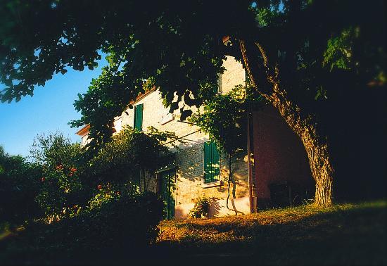 La Valle dell'Olmo Scuro: Apartments and Restaurant