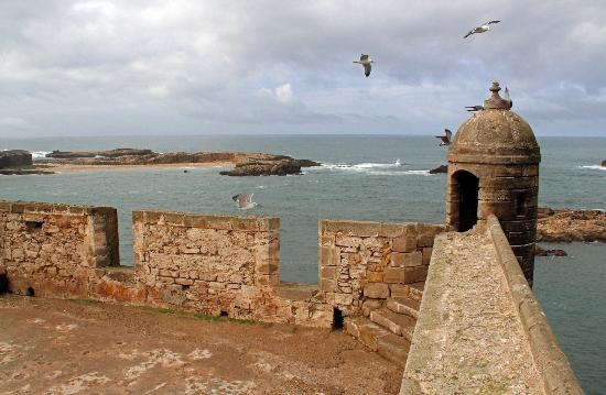 the ramparts of essaouira - photo #20