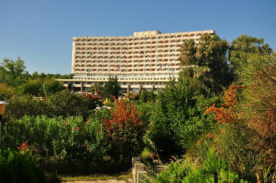 Athos Palace Hotel Chalkidiki : In the garden, Athos Palace, Sept 2012
