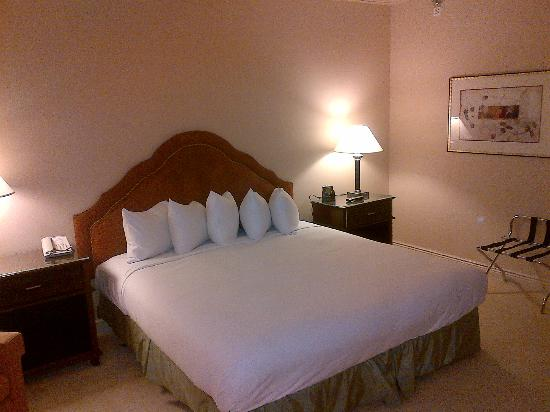 Hilton Newark Airport: Bedroom