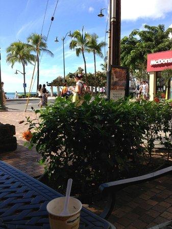Waikiki Resort: Waikiki !