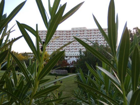 Ξενοδοχείο Άθως Παλάς: In the garden, Athos Palace, Sept 2012