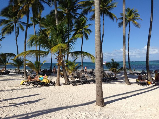 Barcelo Bavaro Beach - Adults Only: Palmenstrand