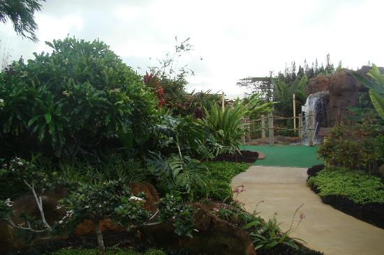 Kauai Mini Golf: a very unique mini golf course