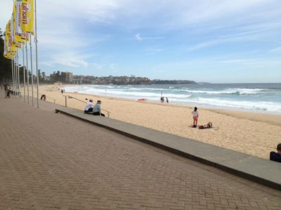 Manly Beach, Looking North I