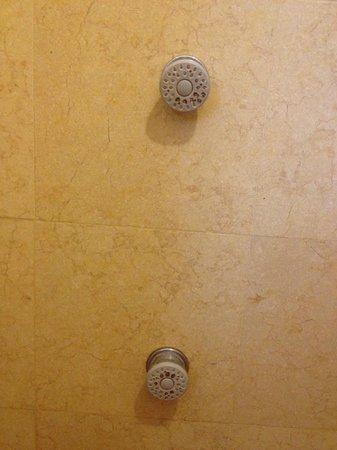 Al Giardino Bed and Breakfast: Clean shower?