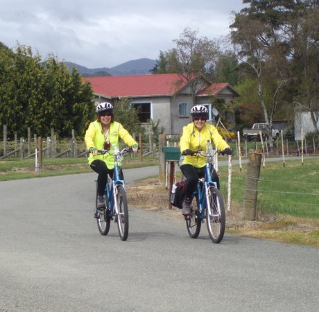 Wheelie Fantastic Cycle Hire & Tours: Cycling in Mapua
