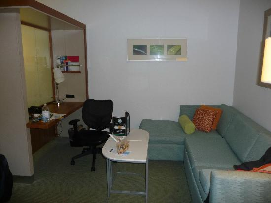 SpringHill Suites by Marriott Orlando at SeaWorld: Desk/sofa area