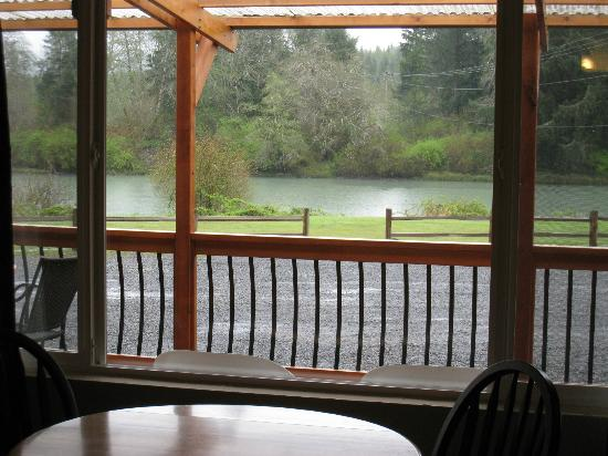 Quinault River Inn: All rooms view the river!