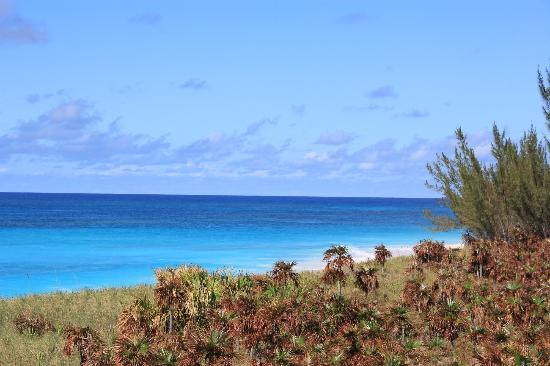 Shannas Cove Resort: The view from the trail to Man-o-War