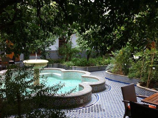 Palais Amani: Inside Garden