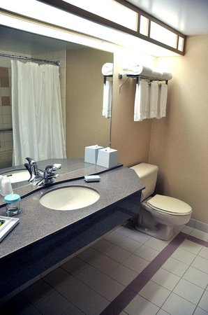 Four Points by Sheraton Winnipeg International Airport: Bathroom: adequate counter space, good lighting