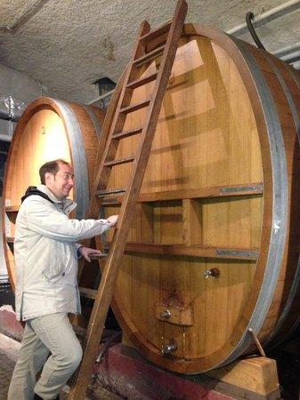 Swiss Riviera Wine Tours: The specialist