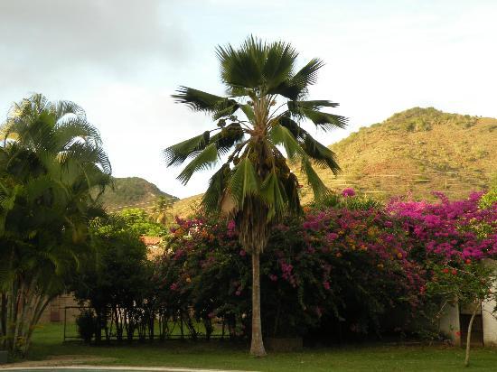 Paraguachi, فنزويلا: Exteriores
