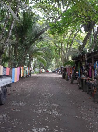 Coconut Grove Oceanfront Cottages: Dominical