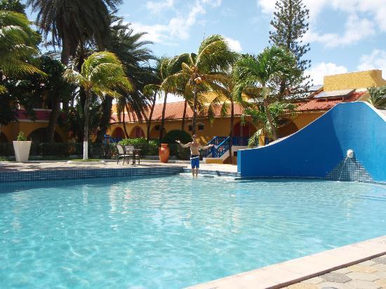 Divi Flamingo Beach Resort and Casino照片
