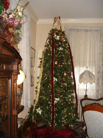 Beauclaire's Bed and Breakfast: The tree.