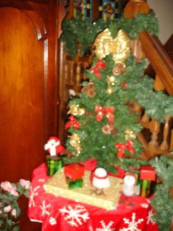 Beauclaire's Bed and Breakfast: Christmas decorations
