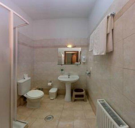 Xenonas sta Tzakia : Bathroom