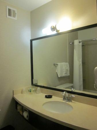 Holiday Inn Civic Center (San Francisco): Clean