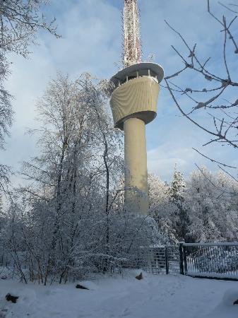 Königstuhl: Im Schnee