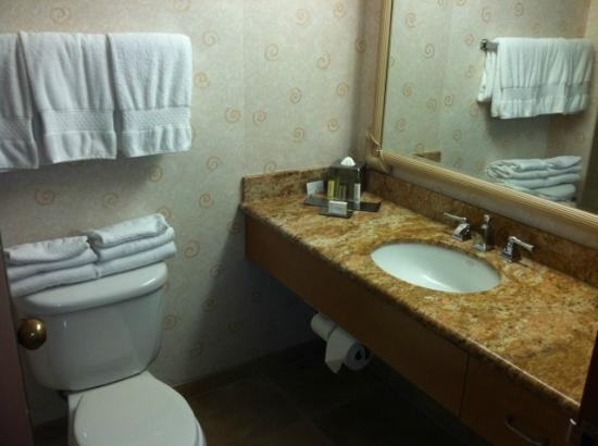 Doubletree by Hilton Anaheim - Orange County: same old bathroom, what happen here? no update :(