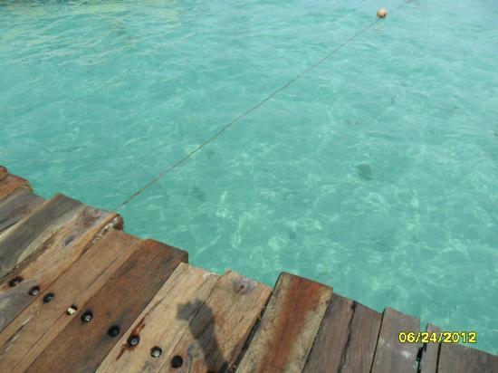 米婭礁女人島飯店照片