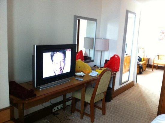 Hotel Menara Peninsula : tv