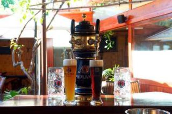 Alpenstube Restaurant and Beer Garden : my favourite German bear - on tap