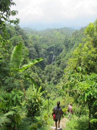 Sekumpul Waterfalls: Sekumpul