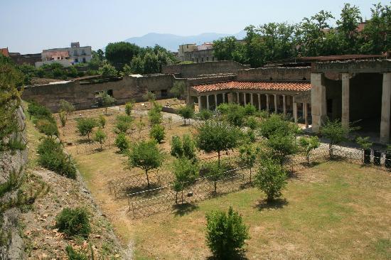 Torre Annunziata, Italy: Excavaton