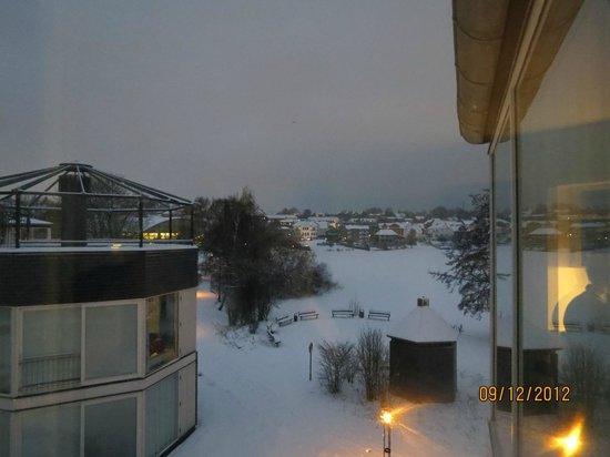 Kolding Hotel Apartments: Utsikt över frusen sjö