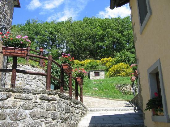 """Agriturismo Borgo Tramonte: Il """"Borgo"""" fiorito"""