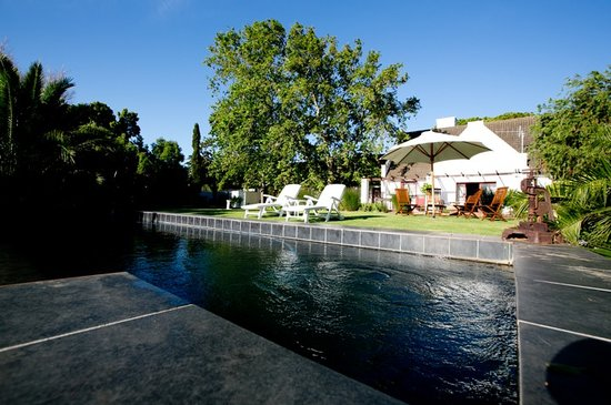 Chelaya Country Lodge: Huge leafy gardens and rim flow swimming pool