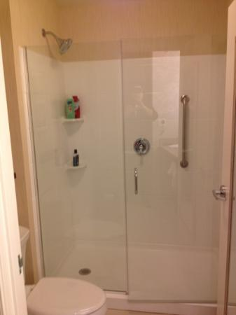 Residence Inn by Marriott Springfield South: Glass enclosed shower
