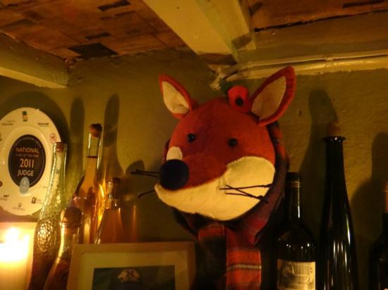 The Star Inn: A final example of taxidermy