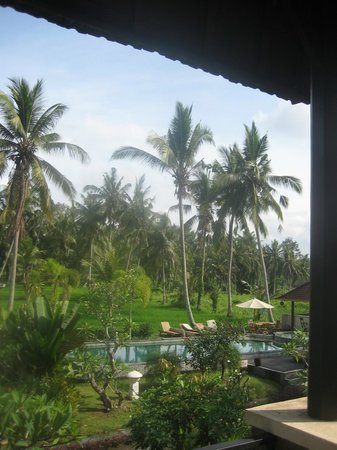 Bhanuswari Resort & Spa: Lovely view from private balcony