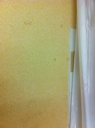 Campanile Birmingham: Dirty bathroom walls